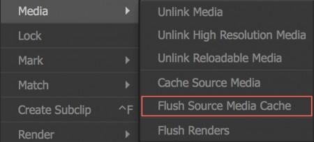 Flush Source Media Cacheはメディアストレージのキャッシュを消去